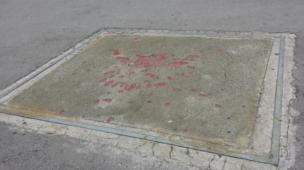 rose di Sarajevo