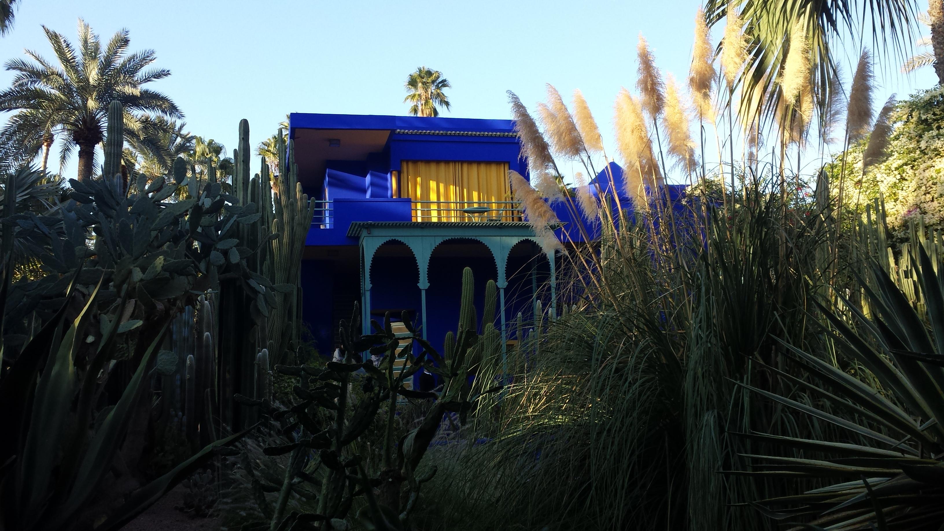 cosa fare marrakech jardin majorelle