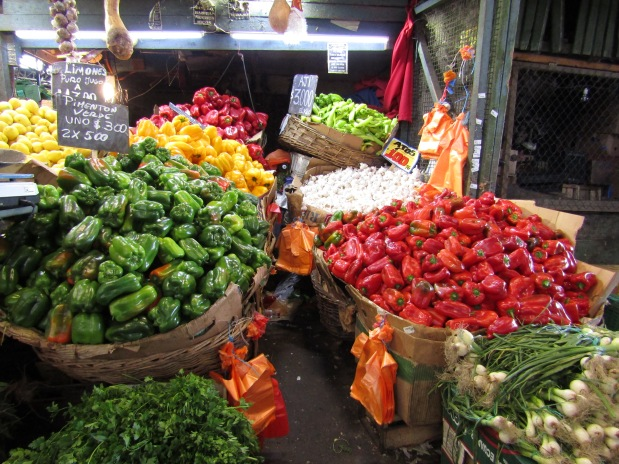 mercati santiago del cile vaga central