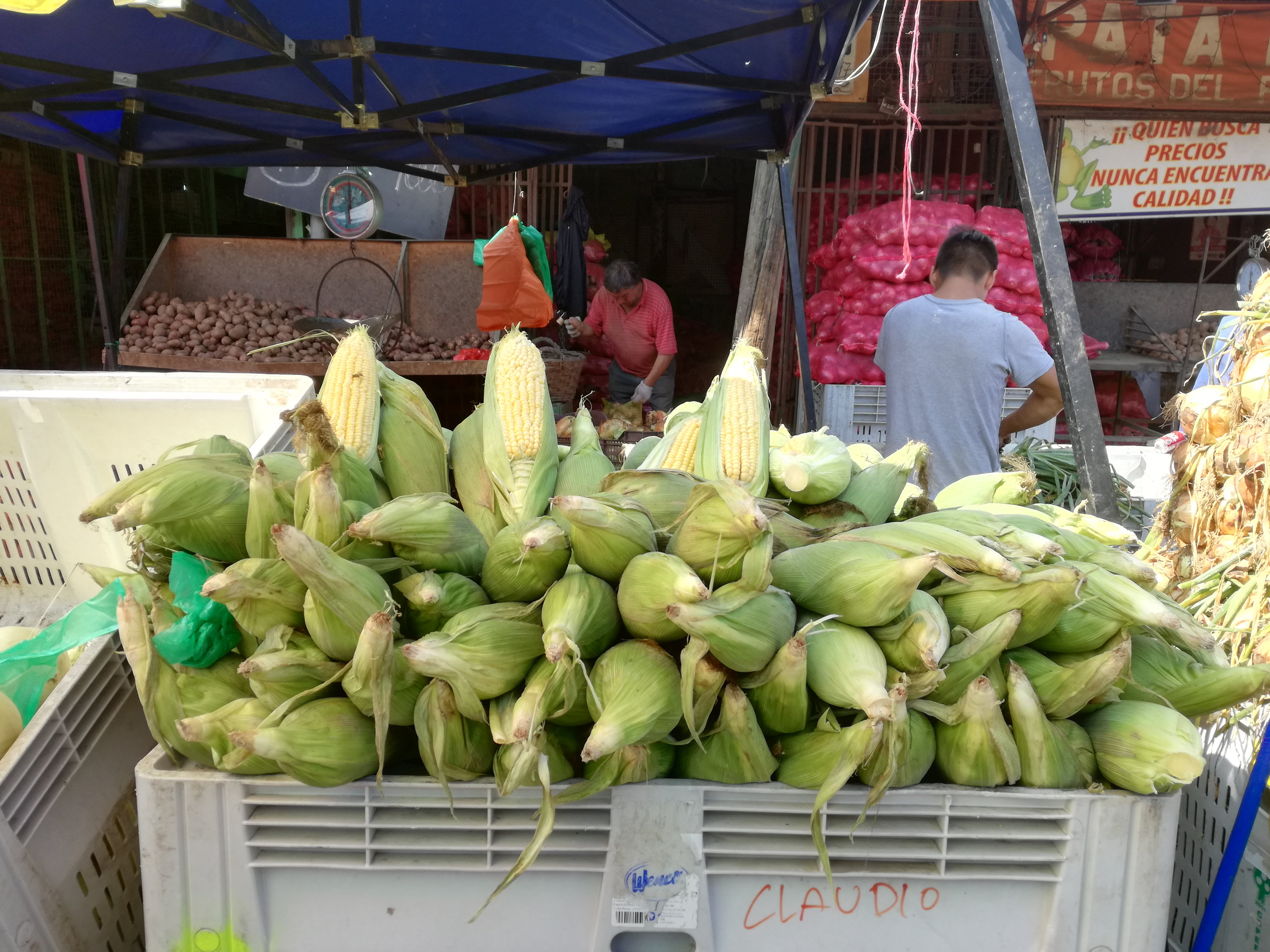 mercati santiago del cile la vega central