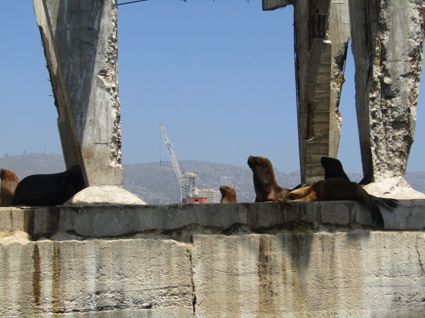 cosa vedere valparaiso porto