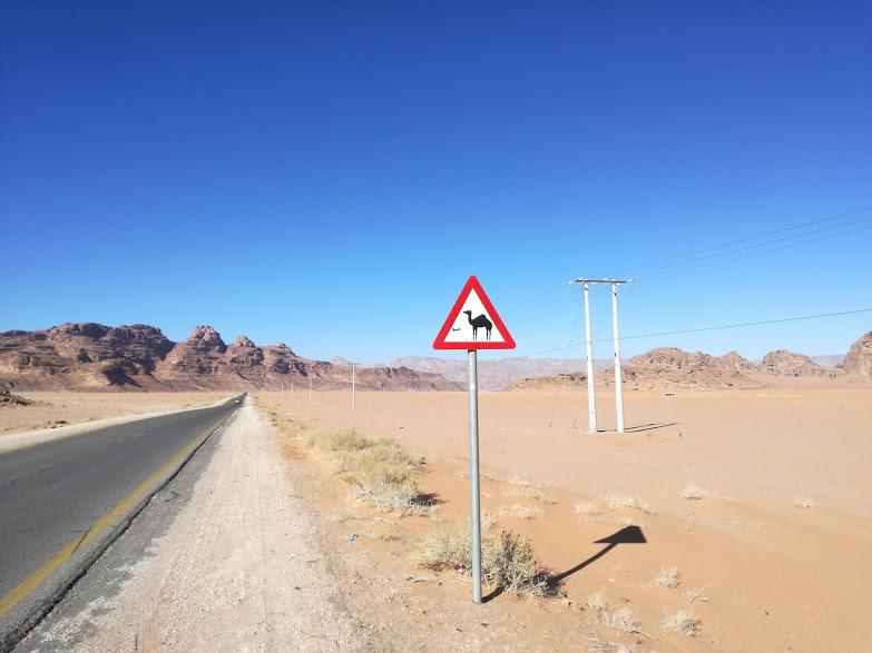 giordania segnale cammello