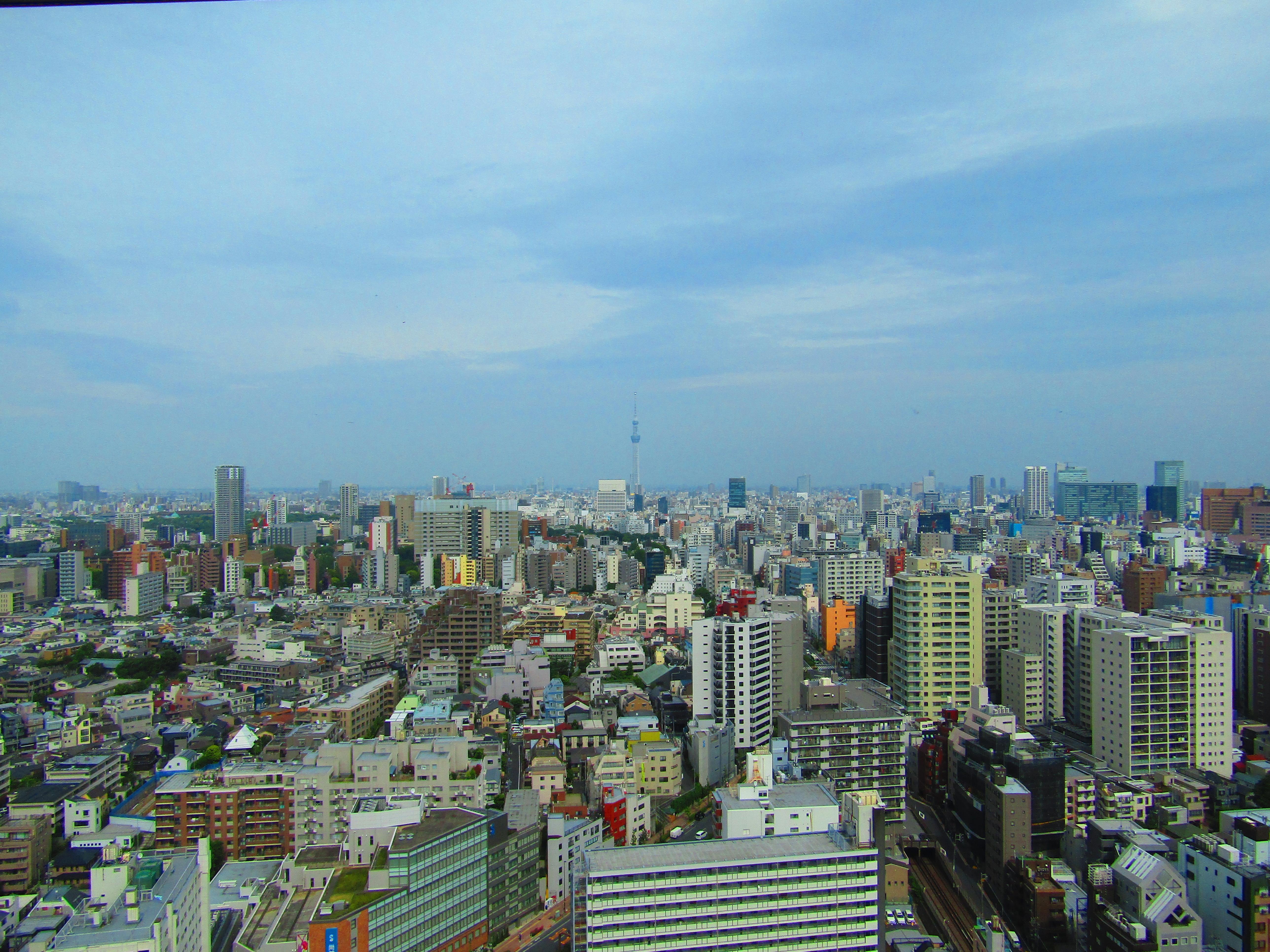 dove vedere tokyo dall'alto